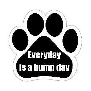 Everyday Is a Hump Day Car Magnet: Everything Else