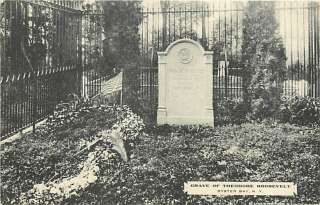 NY OYSTER BAY TEDDY ROOSEVELTS GRAVE ALBERTYPE R28211