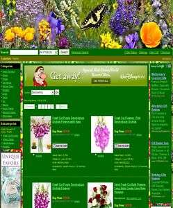Amazing Flower And Gift Shop Website For Sale