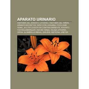 Aparato urinario: Anatomía del aparato urinario