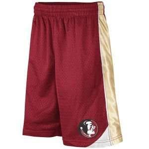 Florida State Seminoles Colosseum NCAA Youth Vector Shorts