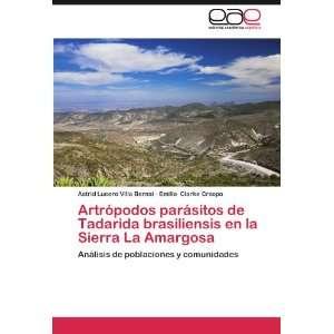 ): Astrid Lucero Villa Bernal, Emilio Clarke Crespo: Books