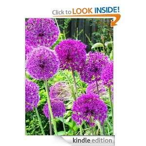 Your Summer Garden Grow: A Guide To Growing Beautiful Summer Gardens