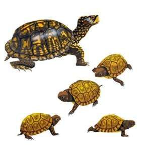 Momma & Baby Turtles Wall Stickers