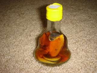 real baby cobra snake in a small X.O glass bottle