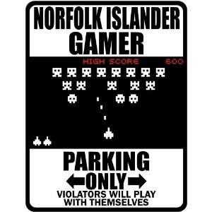 Norfolk Islander Gamer   Parking Only ( Invaders Tribute   80S Game