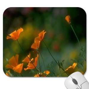 75 Designer Mouse Pads   Flowers/Floral (MPFL 600)