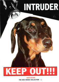 Keep Out INTRUDER Dog Sign Rotweiller/Pit bull/Alsatian