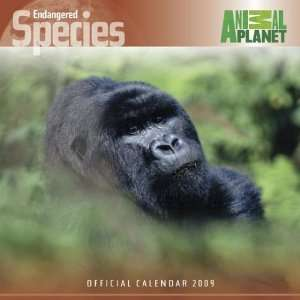 Discovery Channel Endangered Species 2009 Calendar  Square
