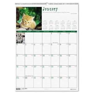 House of Doolittle  Kittens Monthly Wall Calendar, 12 x