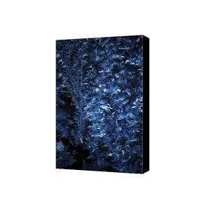 Frost on Window Canvas Print / Canvas Art   Artist David