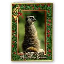 Meercat African Animal Blank Christmas Card by OldeTimeMercantile